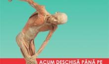 """Expoziția """"Our Body"""" Cluj-Napoca, ultimele 2 săptămâni!"""
