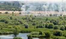 Trei incendii, în ultimele 48 de ore, în Parcul Natural Văcărești