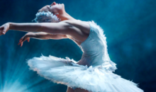 Reguli de acces si conduita la spectacolul Lacul lebedelor – balet pe gheata