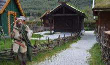 Valea Vikingilor – un exemplu de bună practică în antreprenoriatul cultural