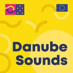 Au început înscrierile pentru Danube Sounds – un program european dedicat muzicienilor